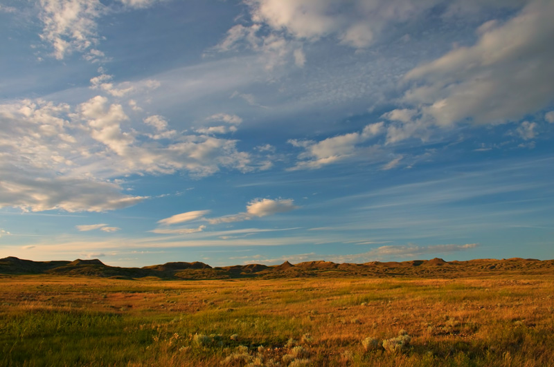 A wide-angle photograph of Grasslands National Park