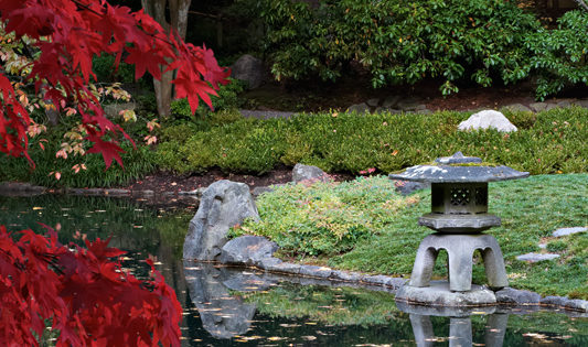Nitobe Memorial Garden | Botany Photo of the Day
