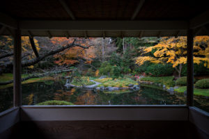The fading autumn at Nitobe Memorial Garden