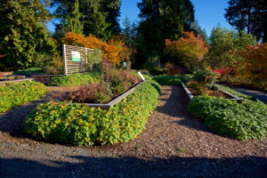 Grow Green Demonstration Beds in UBC Botanical Garden