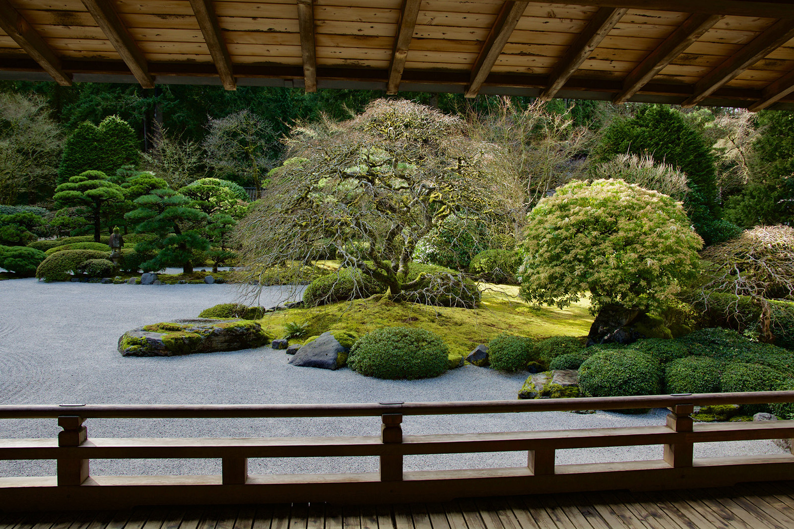 A viewscape in Portland Japanese Garden